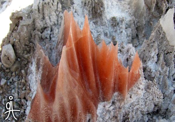 سنگ نمک معدن ایوانکی