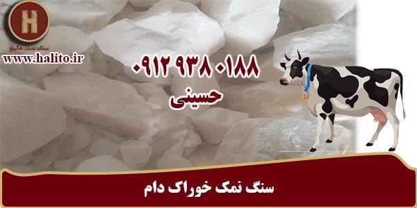 خرید سنگ نمک کلوخه