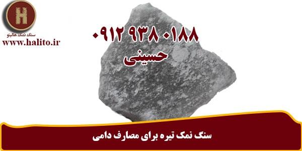 سنگ نمک بزرگ